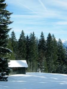 snow-1002735_640